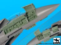 A48096 1/48 F-15 B/D electronics Blackdog