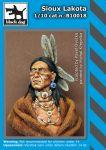 B10018 Sioux Lakota